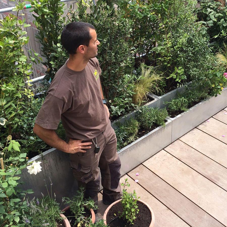 Aménagement D Une Terrasse Avec Jardinières Jardins De L