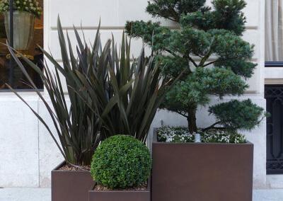 Jardin-paysagiste-composition-Terrasse-Paris-744