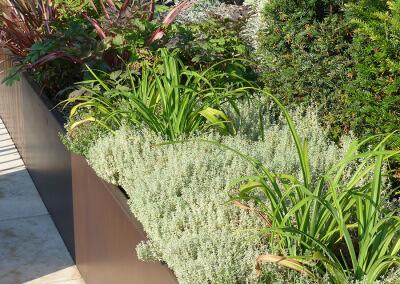 Jardin-paysagiste-fleurissement-Terrasse-Paris-24