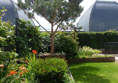 Jardin-paysagiste-fleurissement-Terrasse-Paris-5