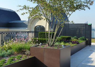 Jardin-paysagiste-fleurissement-Terrasse-Paris-872