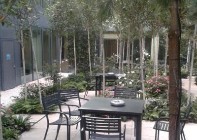 Terrasse du restaurant végétalisée