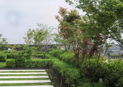 Jardin terrasse du Président
