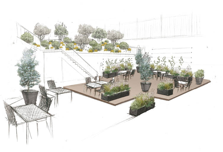 Envie de jardin et d espace vert for Creation espace vert jardin