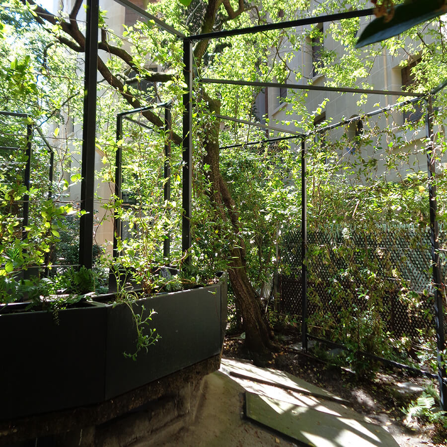 Cr ation d un jardin d ombre paris for Amenagement jardin 06