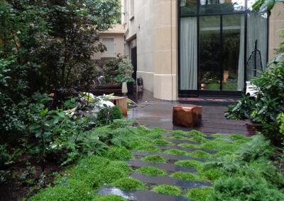 Création d'un jardin d'ombre à Paris