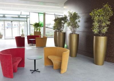 Installation et entretien de bac garnis de plantes d'intérieur