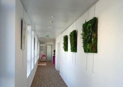 Bacs et tableaux végétaux, Paris 8e