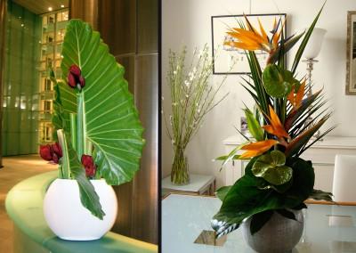 Composition vase graphique