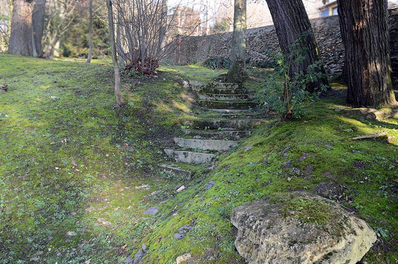 Entretien des espaces verts d une r sidence montmorency for Entretien espace vert mulhouse