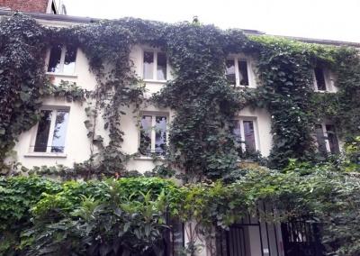 Entretien de façade végétalisée en hauteur