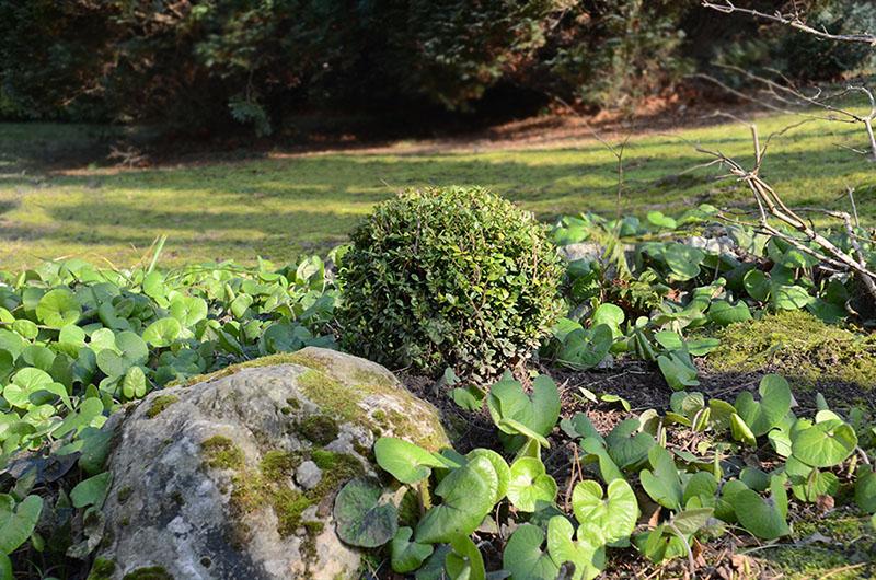 Entretien des espaces verts d une r sidence montmorency for Entretien jardin 02