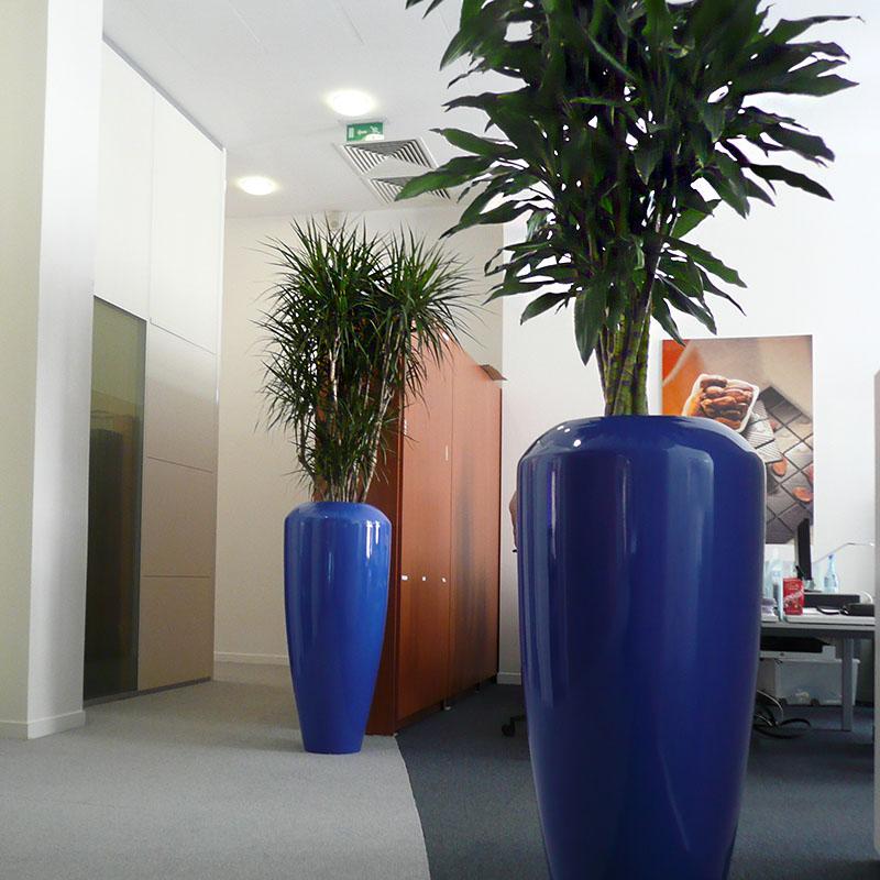 Bac plante bleu