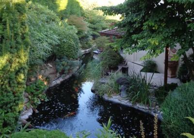 Entretien d'un jardin luxuriant, avec bassin