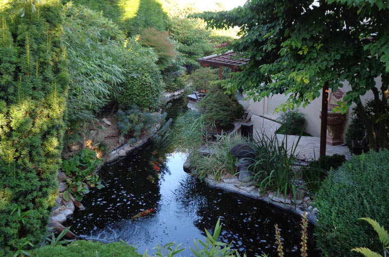 entretien d un jardin luxuriant avec bassin. Black Bedroom Furniture Sets. Home Design Ideas