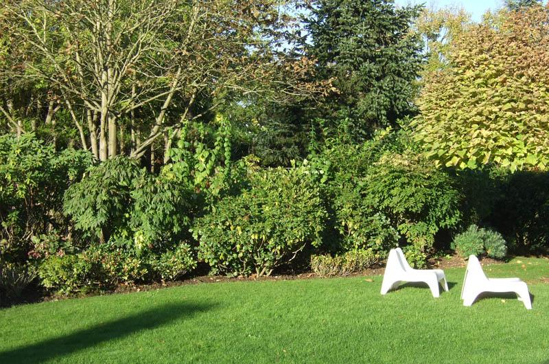 Entretien d un jardin et taille d arbres for Entretien jardin 13