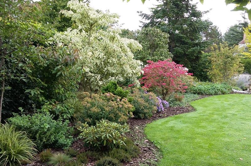 Entretien d un jardin et taille d arbres for Entretien jardin 40