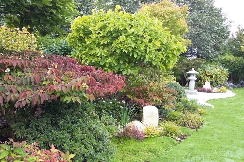 Entretien d un jardin et taille d arbres for Entretien jardin 95