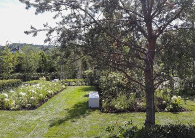 Jardin 009