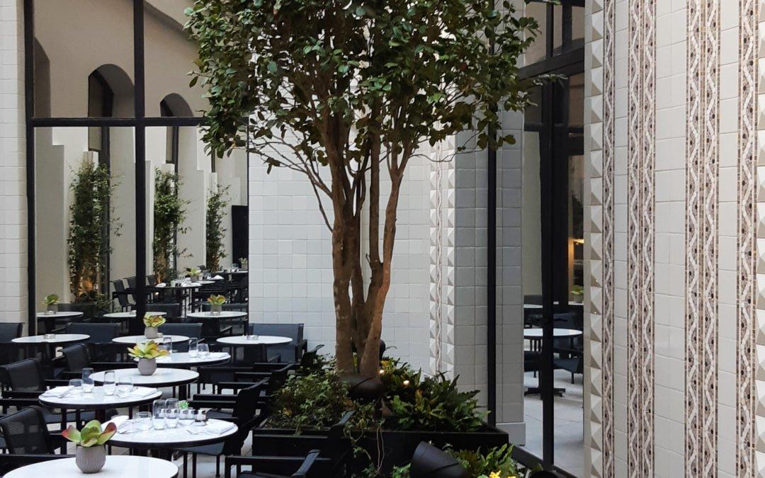Réalisation des terrasses et patios de l'Hôtel LUTETIA PARIS