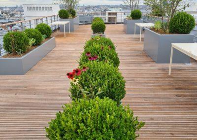Aménagement des terrasses et patios suite à la réhabilitation d'un immeuble de Bureau / Rue de Madrid – 75008